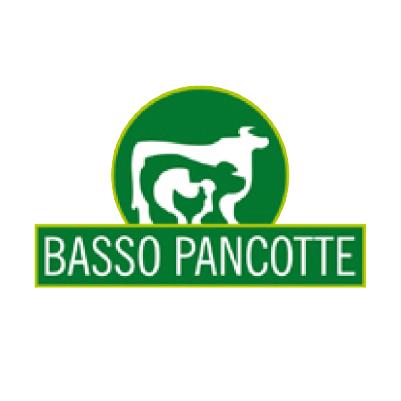 Oneide Francisco Basso